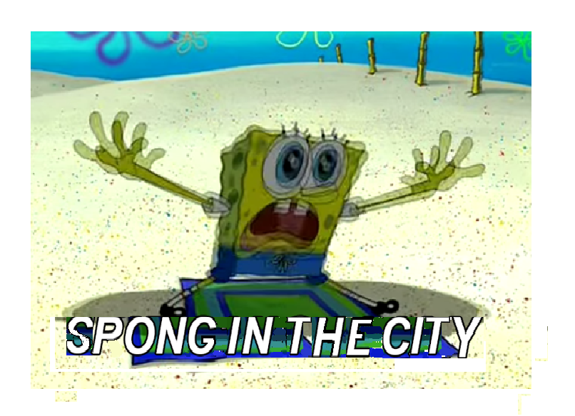 sponge in the  city